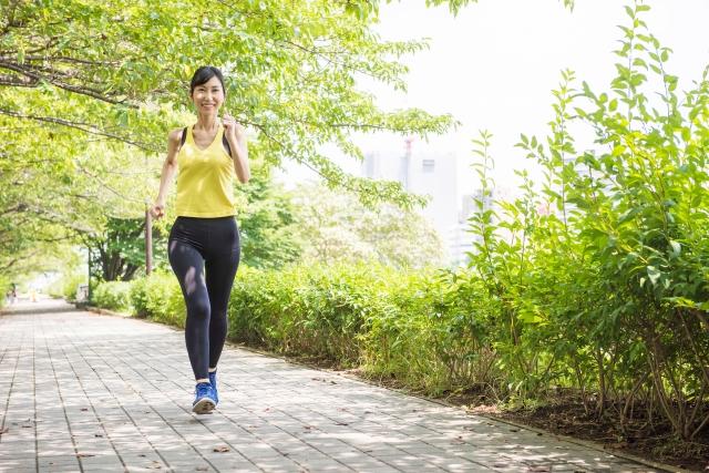 横須賀 ダイエット 基礎代謝